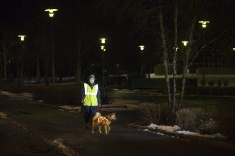 Nainen ja koira heijastinliivit päällä liikenteessä